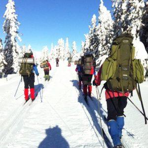Bøler på skitur