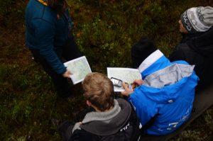 Kart og kompass i skogen